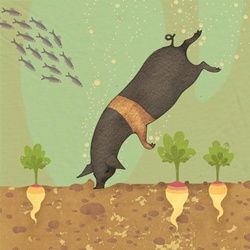 Black pig diving in water