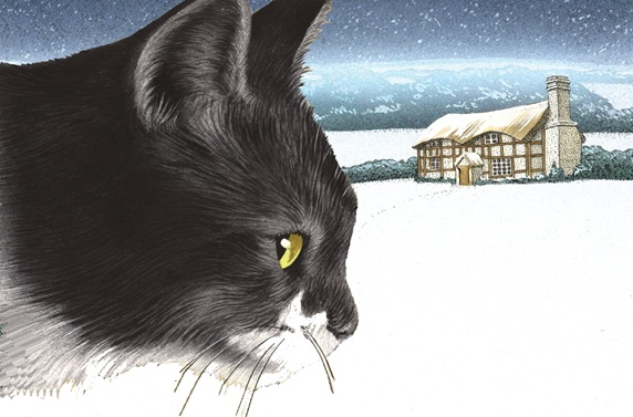 Close-up of cat with cottage in background