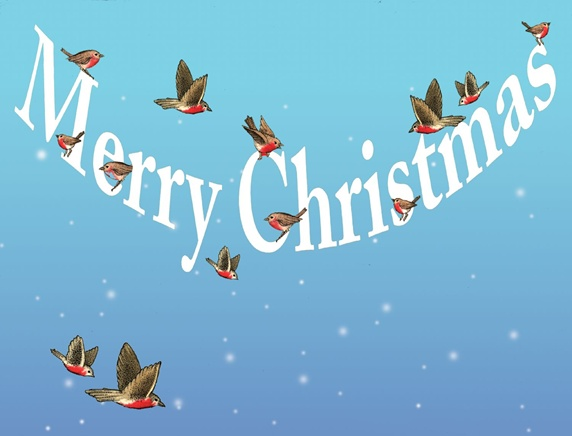 Birds in winter sky and christmas wishes sign