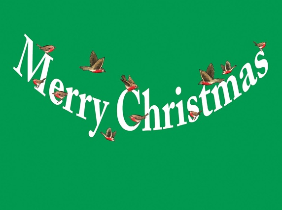 Birds and christmas wishes sign on green background