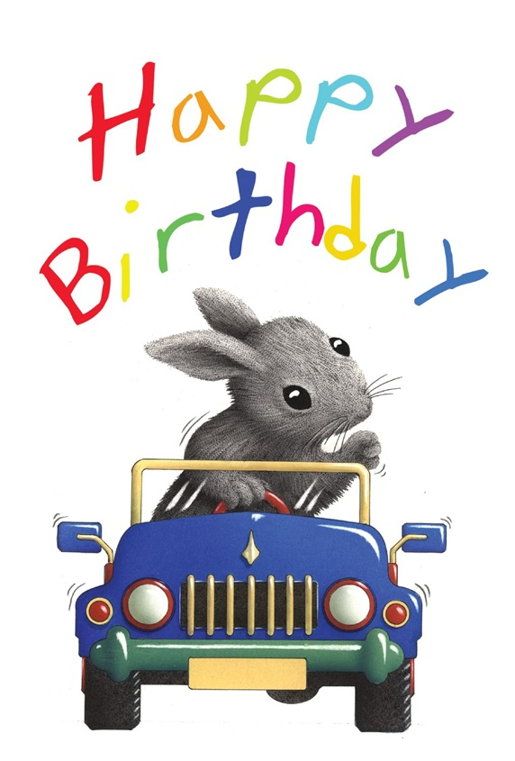 Rabbit in car and birthday wishes sign on white background