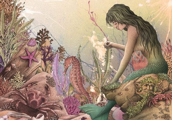 View of mermaid and sea life