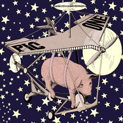 Air vehicle with pig and stars in background