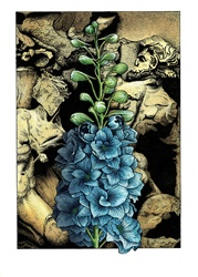 Blue flowers with bas relief in background
