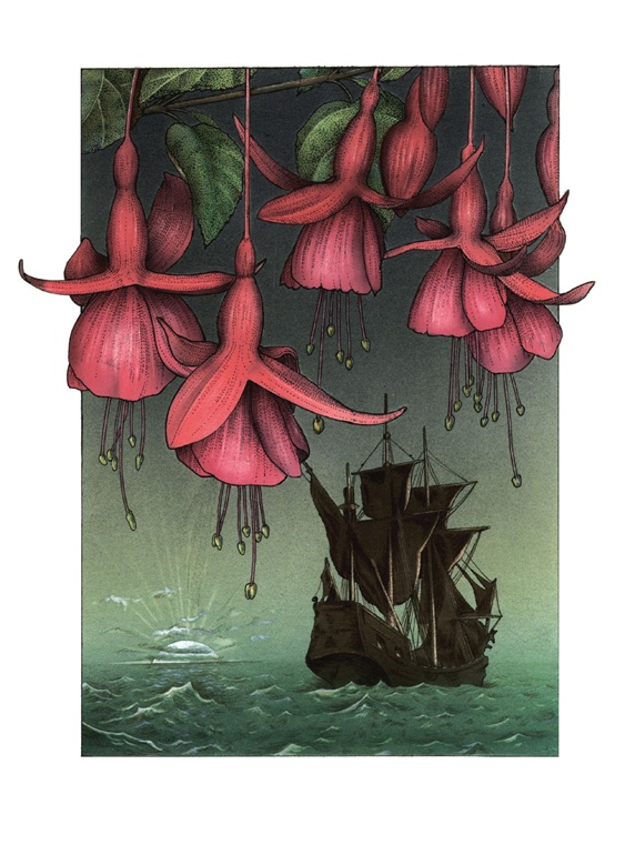 Pink flowers with ship in background