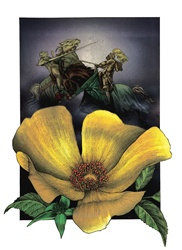 Close-up of yellow flower with fighting knights in background