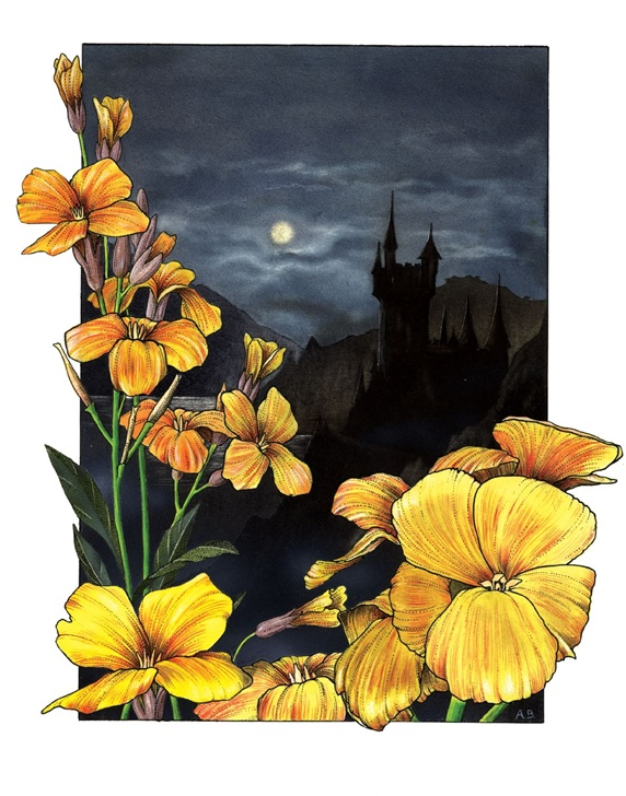 Close-up of yellow flower with castle in background