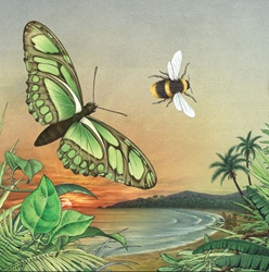 Butterfly and bee flying by sea at sunset