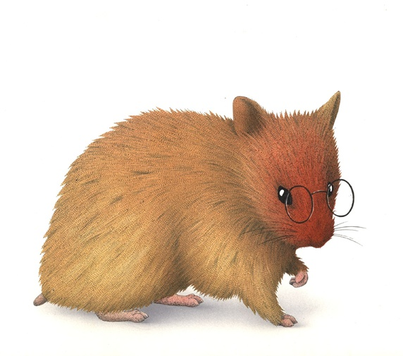 Mouse wearing spectacles on white background