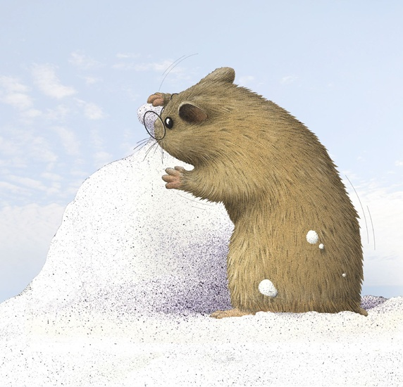 Hamster playing outdoors in snow