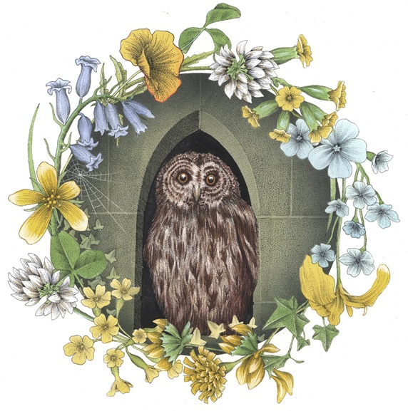 Owl in arch window with flowers