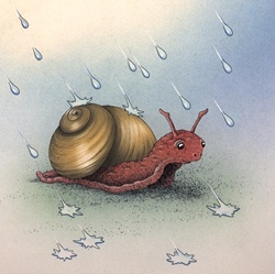 Snail and raindrops