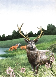 Forest animals in meadow