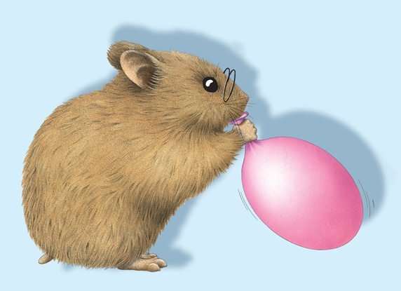 Hamster blowing balloon
