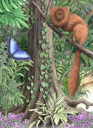 Exotic monkey and butterfly