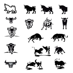 Bulls and bullfighters on white background