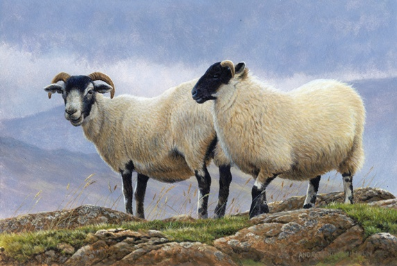 Two goats in mountain landscape