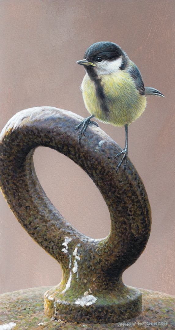 Chickadee perching on metal ring