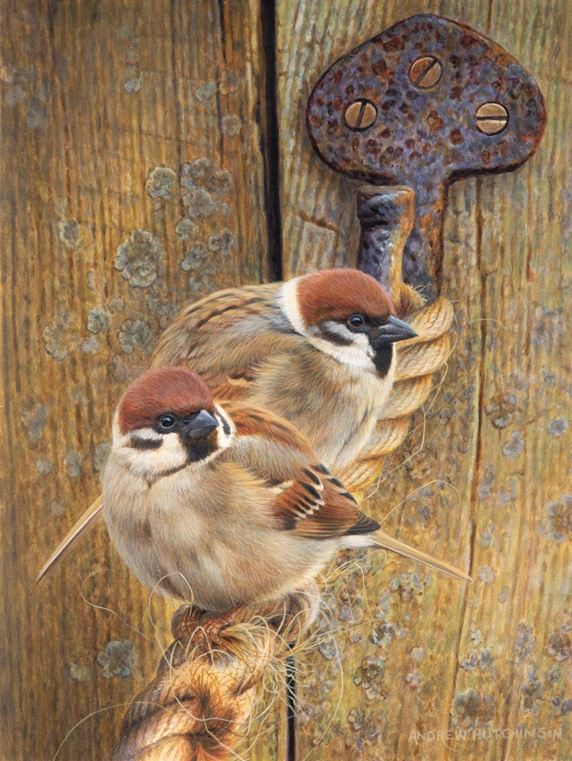 Two sparrows perching on rope by wooden door