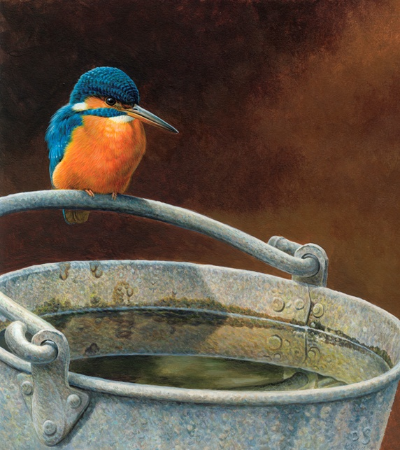 Kingfisher perched on the handle of metal bucket