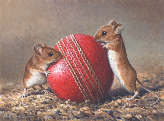 Two mice with red cricket ball