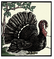 Turkey and tree in background