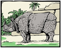 Side view of grey rhinoceros outdoors