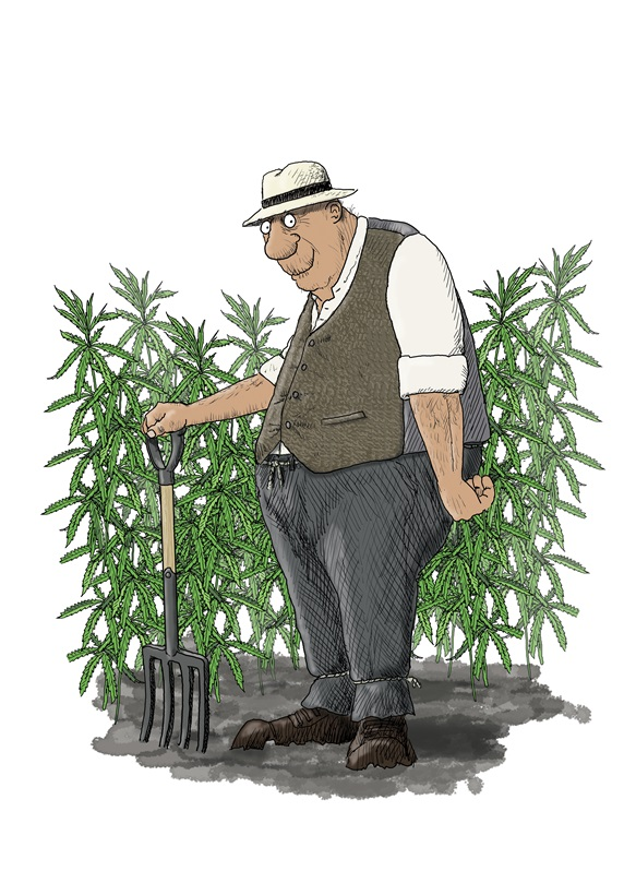 Mature man holding pitch fork, standing in front of cannabis plants