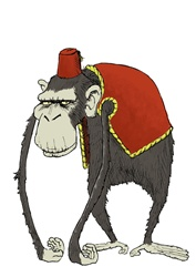 Grey sad monkey in red clothing, Turkish hat