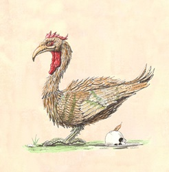 Rooster and human scull