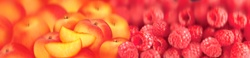 Close up of slices of fresh peaches and raspberries
