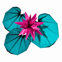 Origami pink lily and lily pad
