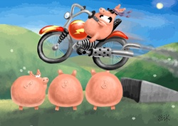 Pig doing stunts on motorcycle