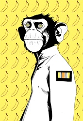 Portrait of monkey in jacket on background with banana pattern