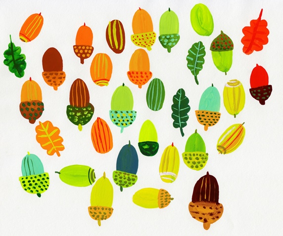 Lots of different color acorns
