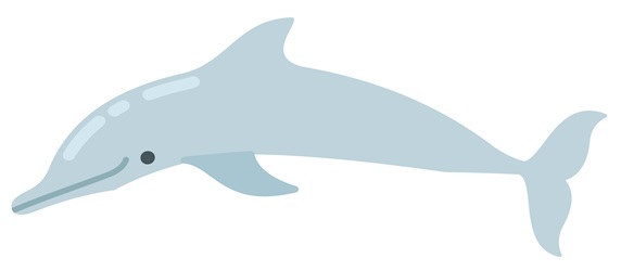 """Dolphin on white background """