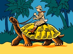 Man on safari riding tortoise