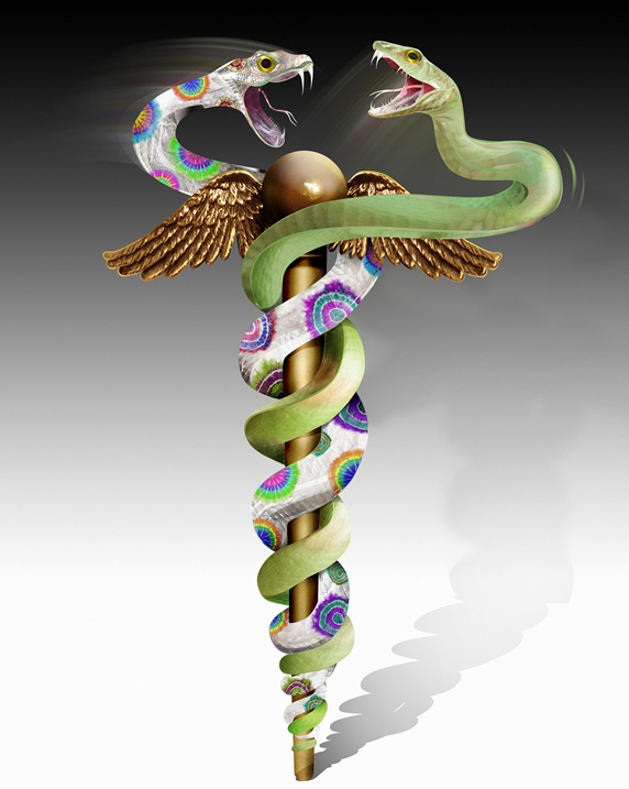 Green and multicolored snakes fighting on caduceus