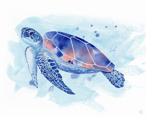 Watercolour painting of sea turtle