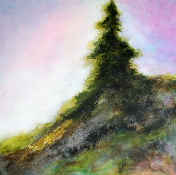 Evergreen tree on hill