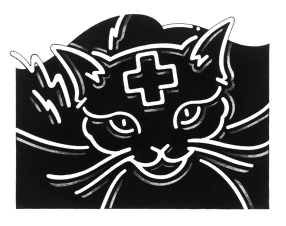 Cat with cross sign on head