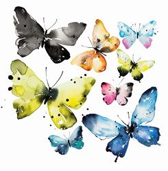 Watercolour painting of different butterflies