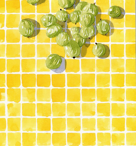 Watercolor painting of fresh gooseberries on checked tile pattern