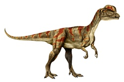 Gray orange dinosaur against white background