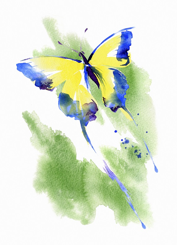 Watercolour painting of flying butterfly