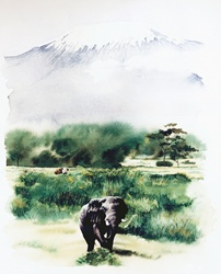Elephant walking across landscape