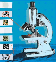 Microscope with magnified microorganisms on microscope slides