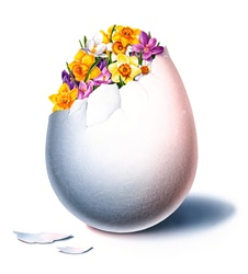 Flowers in egg