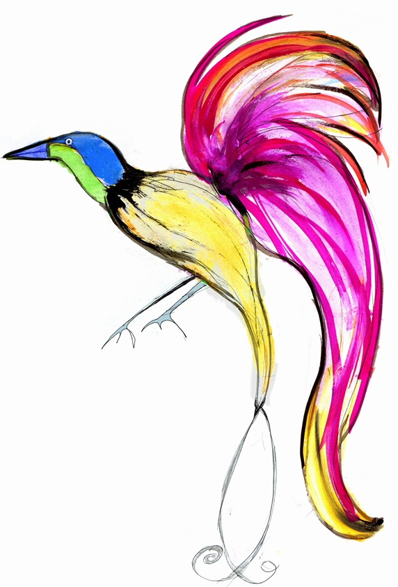 Bright, colorful bird of paradise