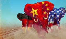 Running elephants painted in national flags colors